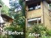 Cedar Siding Restoration